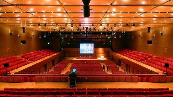 Sale Meeting di AUDITORIUM PARCO DELLA MUSICA - Roma