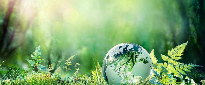 Sustainable Event Professional Certificate approda in Europa